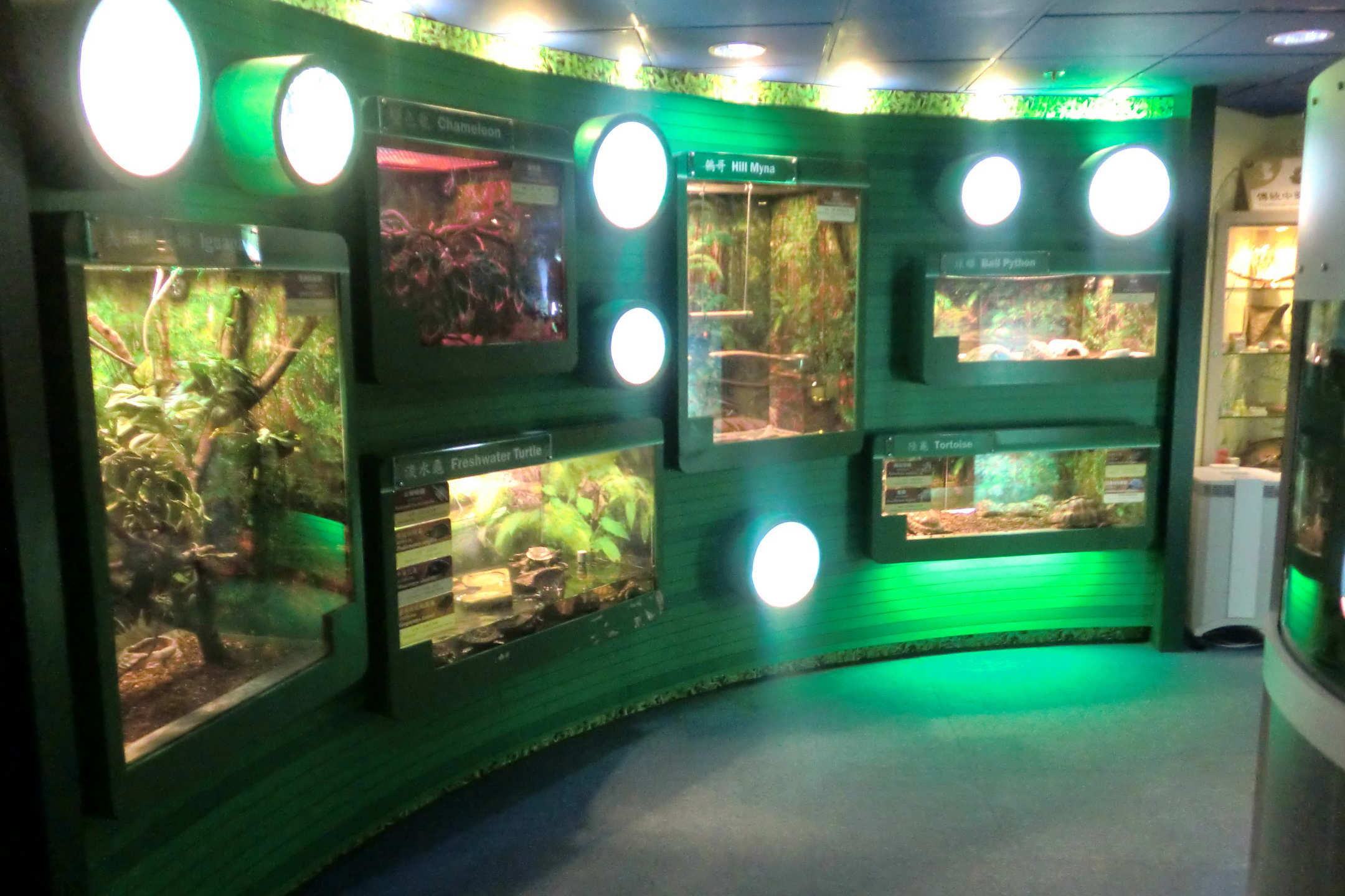 Guided Visit to Endangered Species Resource Centre ESRC